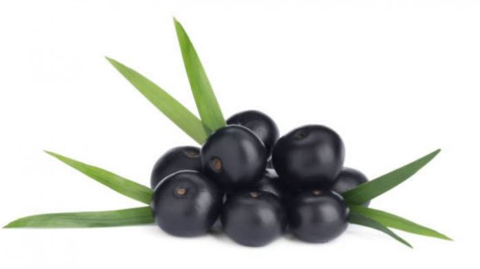 Introduction To Acai Berry
