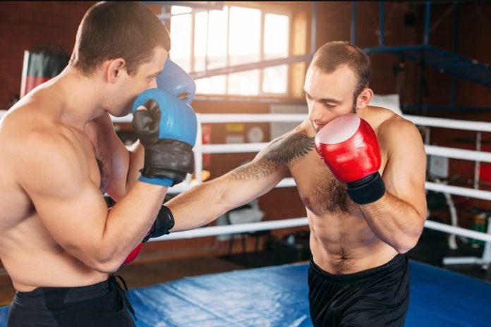 Boxer Training For Physical Fitness