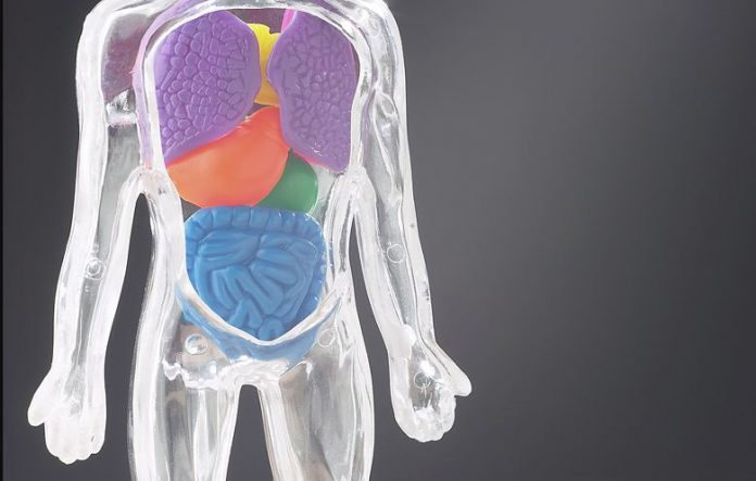 Colon Cleansing: An Essential Ingredient For Optimal Health