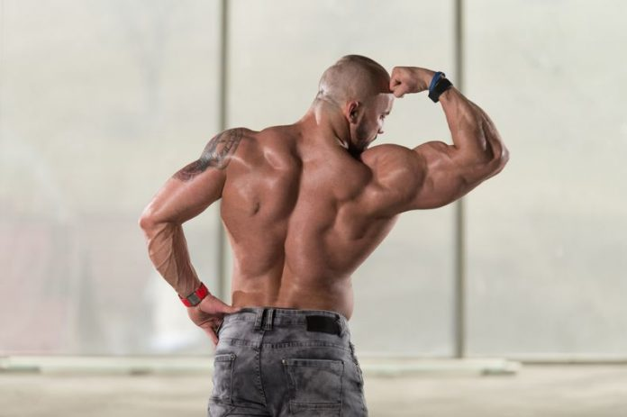 Creatine Supplement: A Bigger & Stronger You
