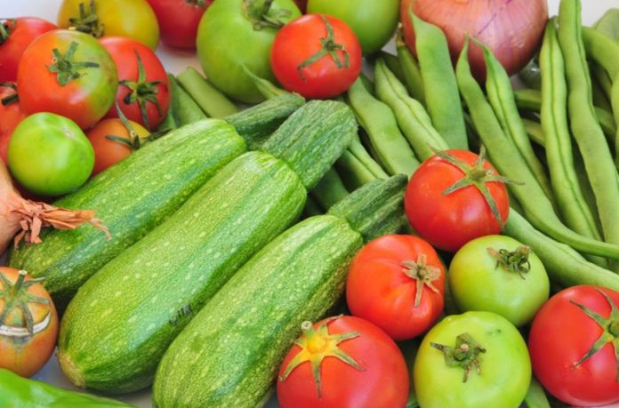 How Sustainable Agriculture Can Influence Our Future