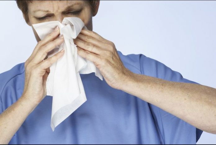 Tips For Avoiding Allergies And Asthma Attacks