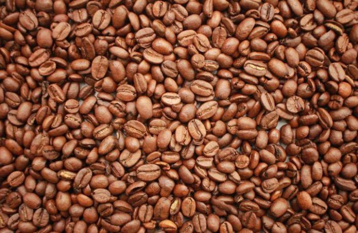 Let Us Talk About Popular Coffee Bean Types