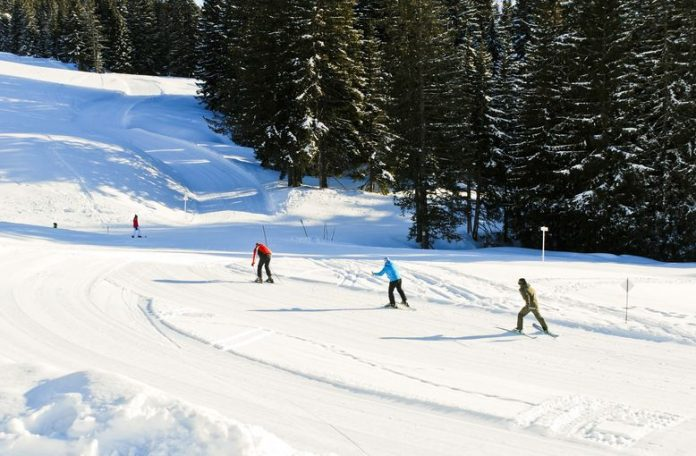 Ski Lessons For Beginners